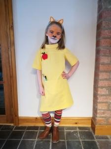 Fantastic Mrs Fox School Photo Dress