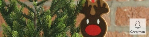 Reindeer Decoration Tutorial