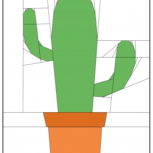 Cactus in a Pot Detailled Coloured Image